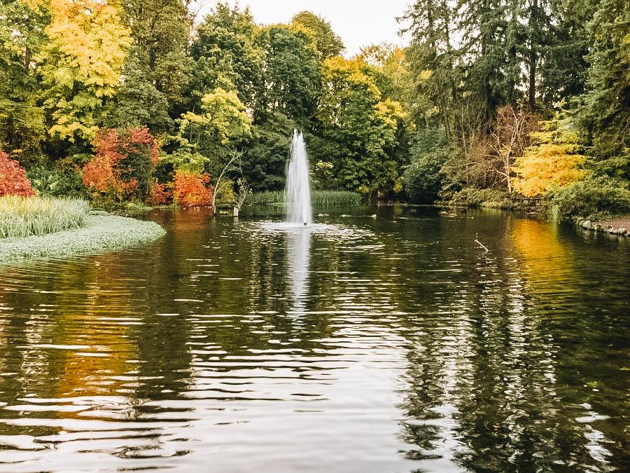 Visit Crystal Springs Rhododendron Garden