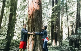 Peter & Annette White Hugging a Redwood Tree
