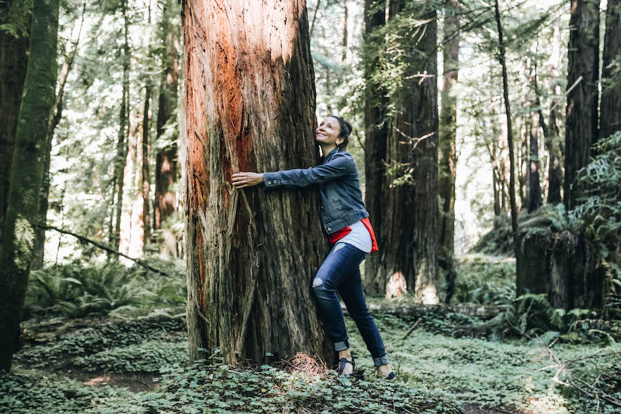 Annette White Hugging a Redwood Tree