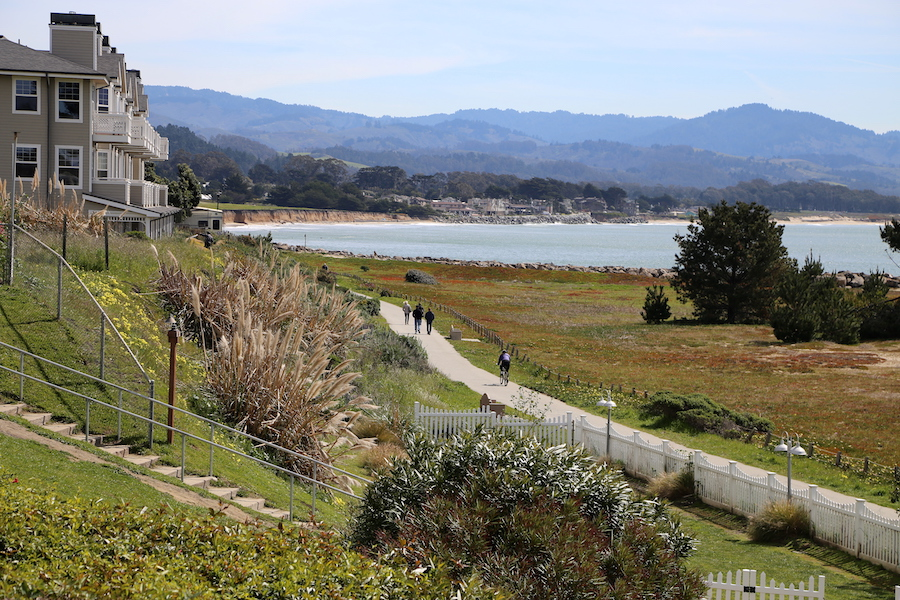 Coastal Trail: Half Moon Bay Bucket List: Things to Do Along California's Coastside