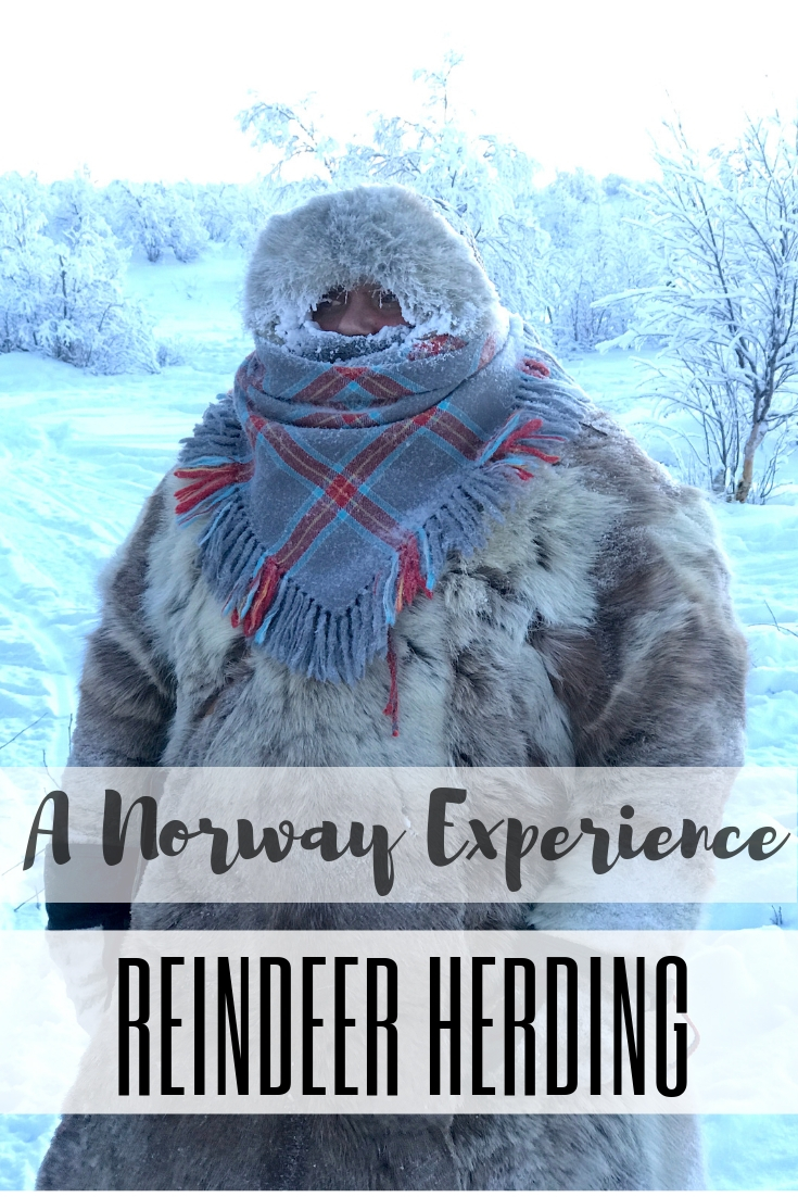 A Unique Home Stay in Norway with Sami Reindeer Herders