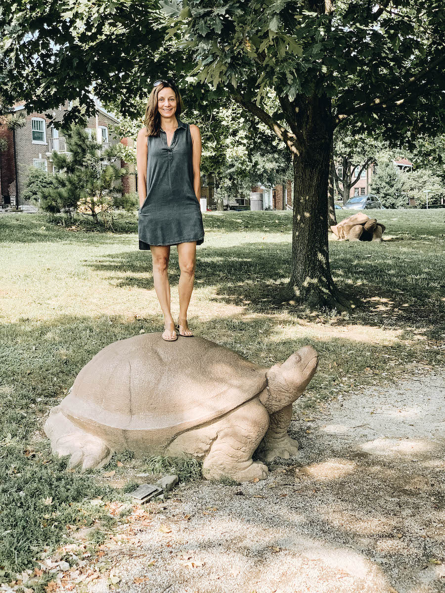 Turtle Playground | St. Louis Bucket List: 15 Fun Things to Do in Missouri's STL