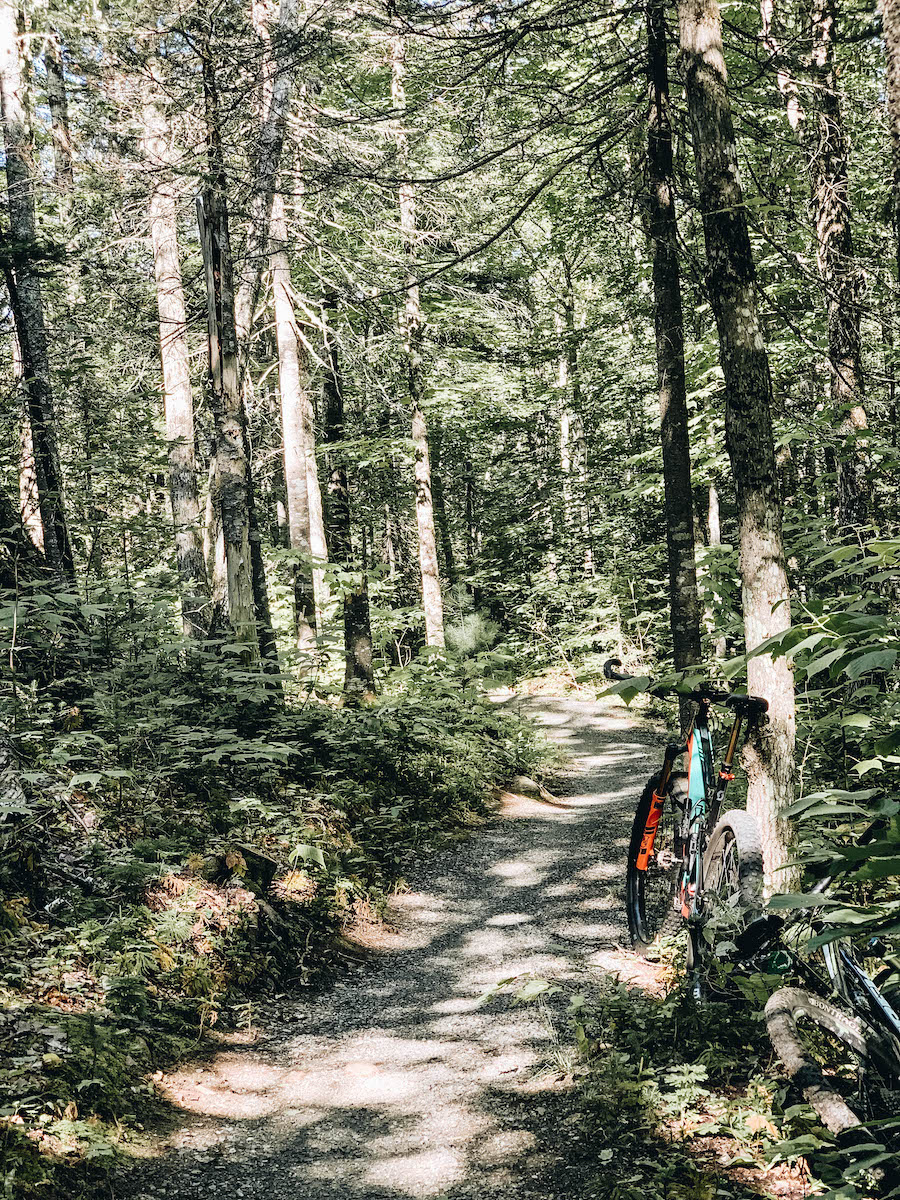 Mountain Bike in Maine