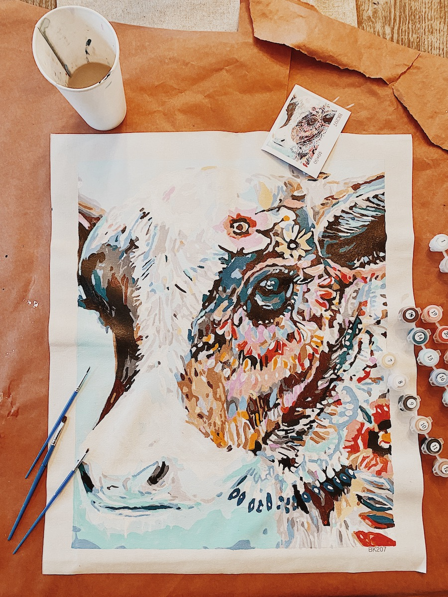 Colorful Cow: The Best Adult Paint by Numbers Kits