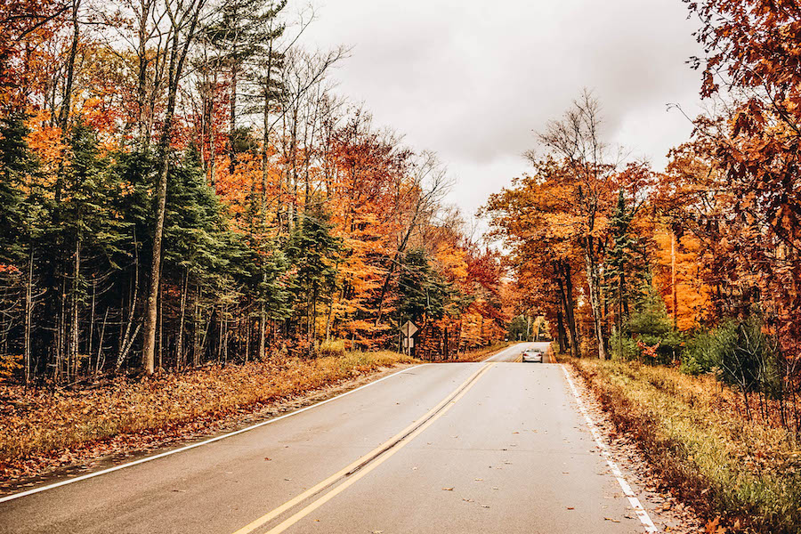 Fall Foliage Road Trip