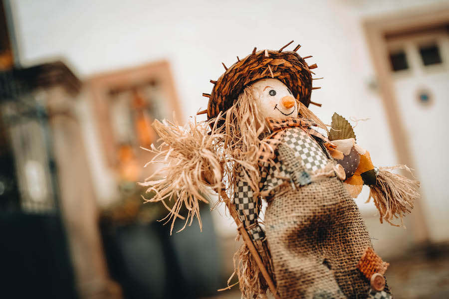 Make your own scarecrow for fall