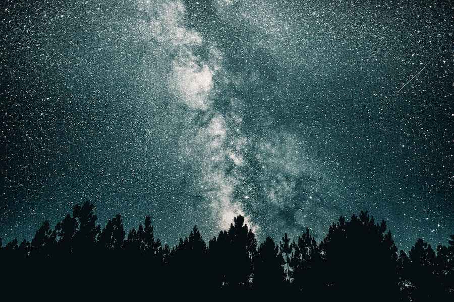 Night Sky: Can you name a star?