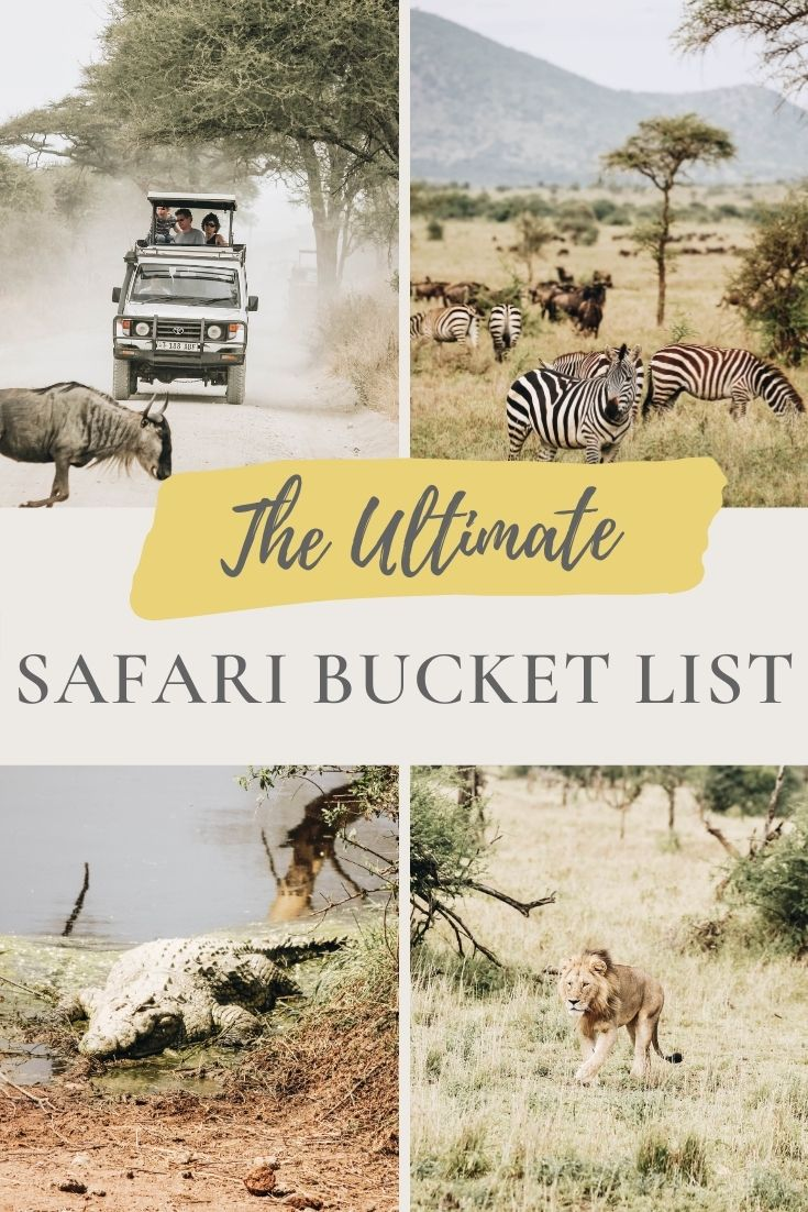 The Ultimate Safari Animal Bucket List: African Wildlife You Must See
