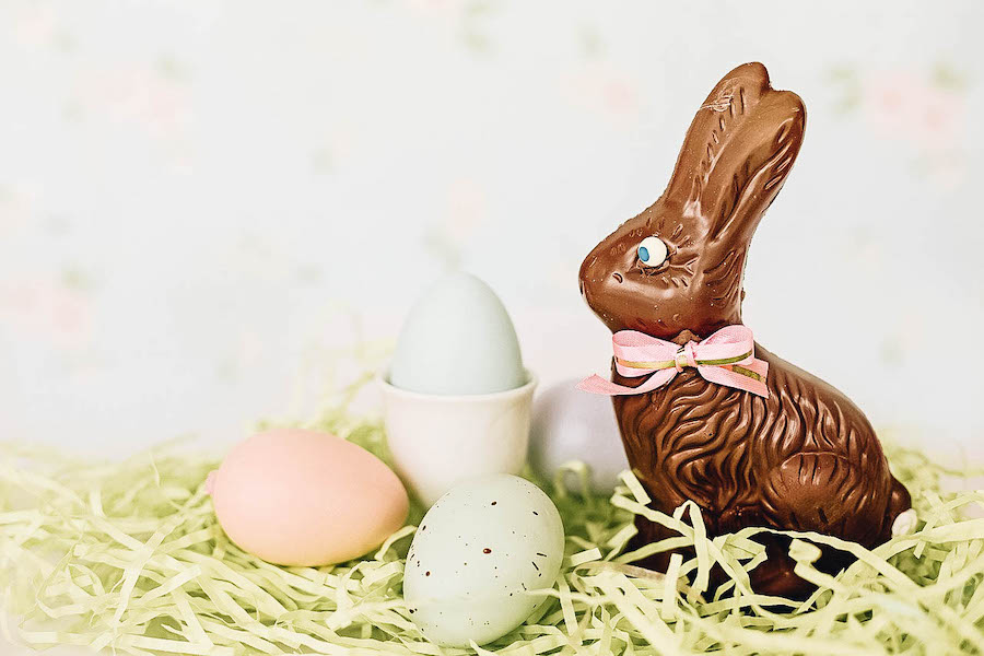 Must do Easter Activity: Eat a Chocolate Easter Bunny