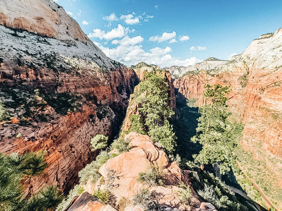 A view of Angel's Landing Trail in Zion Wilderness