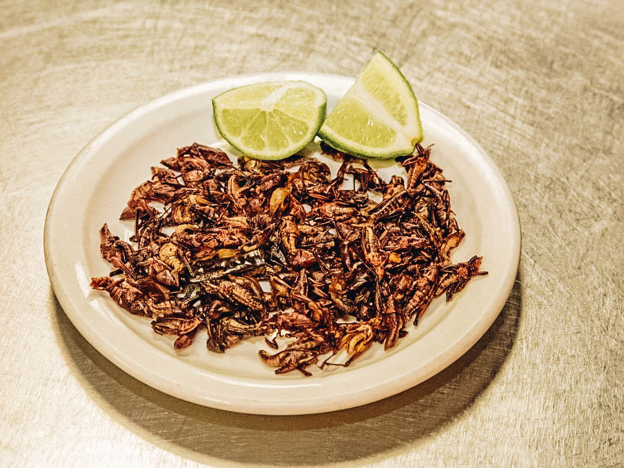 Chapulines served with lime