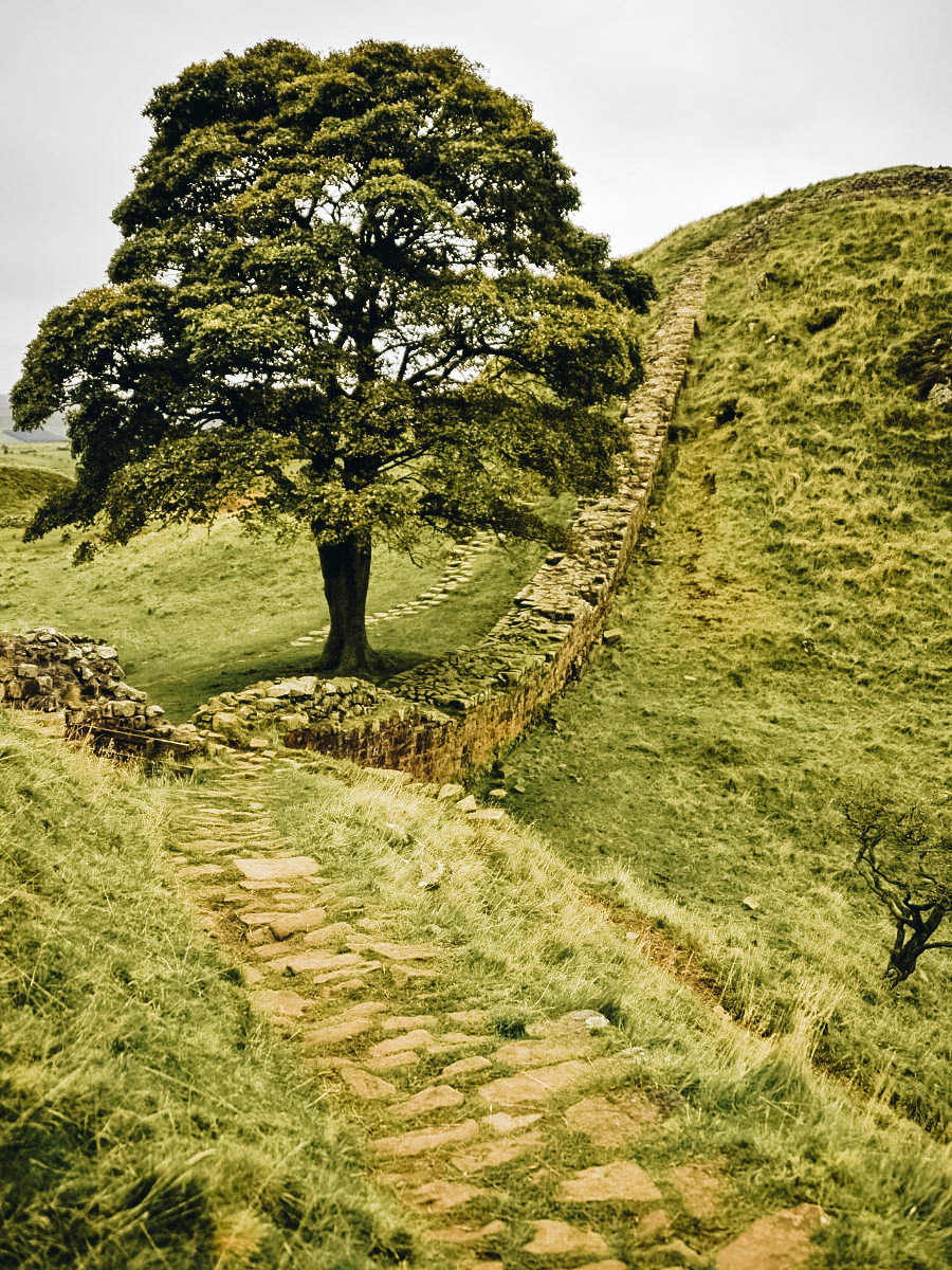 A view of Hadrian's Wall Path England, United Kingdom