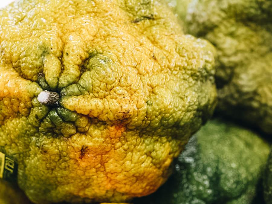 A close up photo of Ugli Fruit