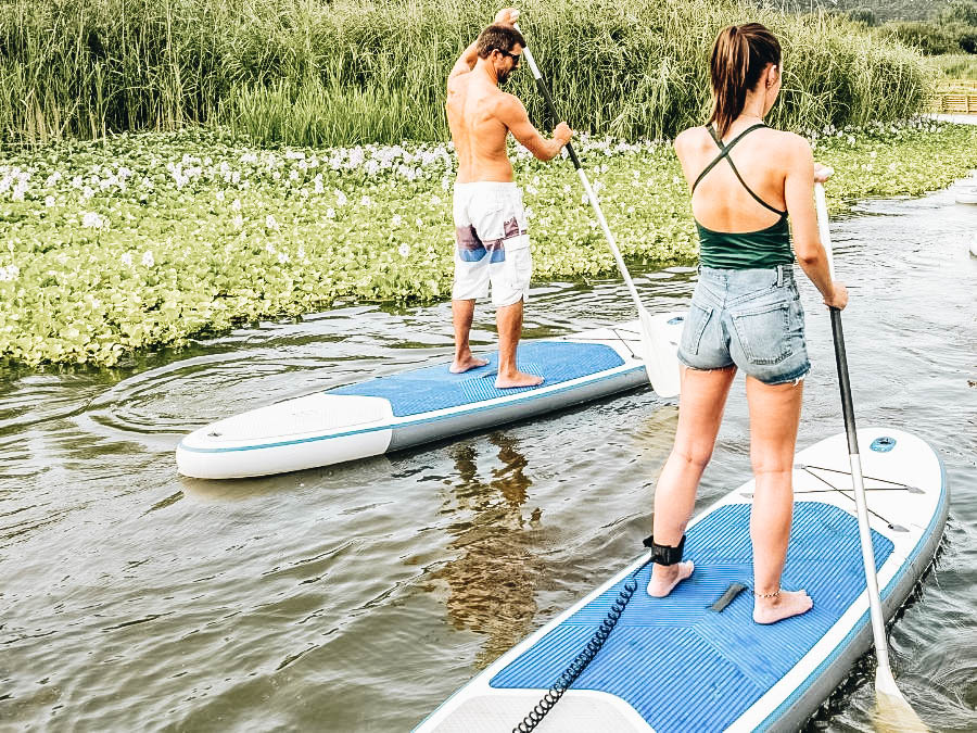 A couple paddle boarding