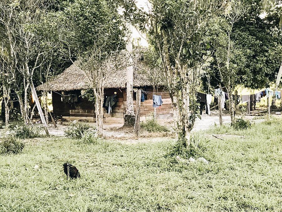 A phot of Rewa Village