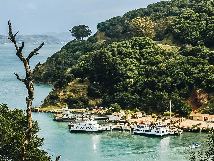 Angel Island's Port