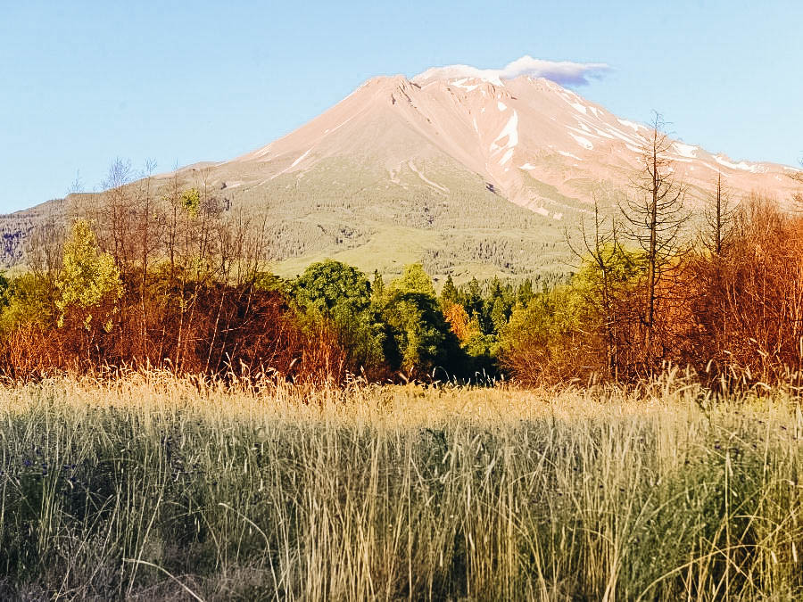 A picture of Mount Shasta