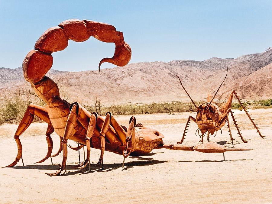 A scorpion versus a grasshopper sculpture at Borrego Springs