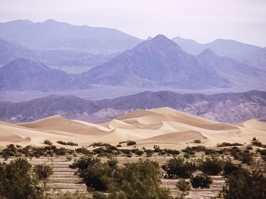 Walk Along the Kelso Dunes in the Mojave Desert RF