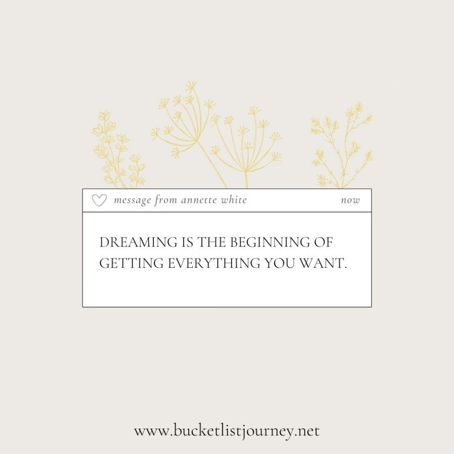 Dreaming is the beginning of getting everything you want