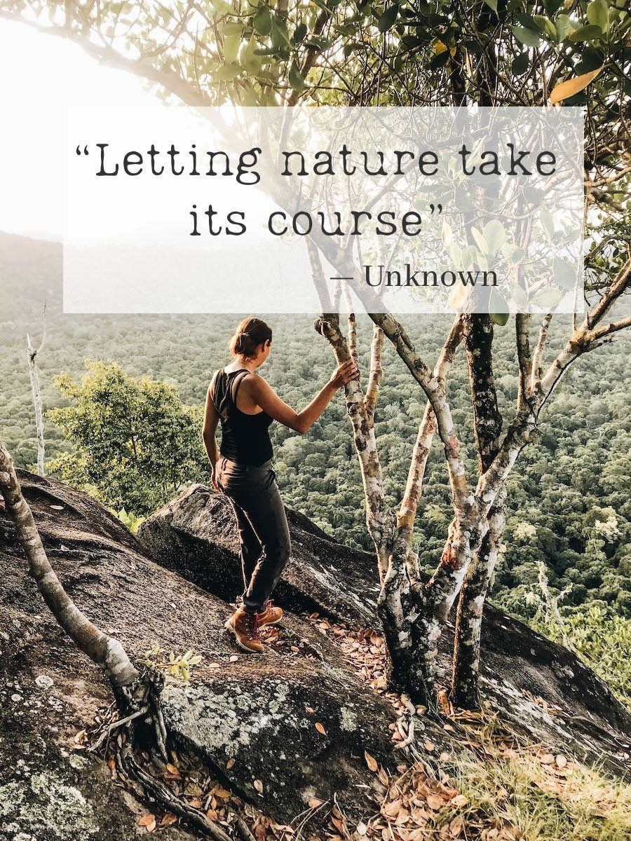 Letting nature take its course