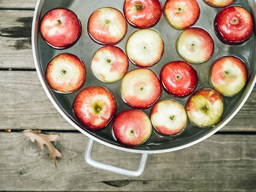 Apples in a basin ready for bobbing