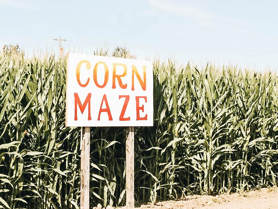 A Corn Maze sign