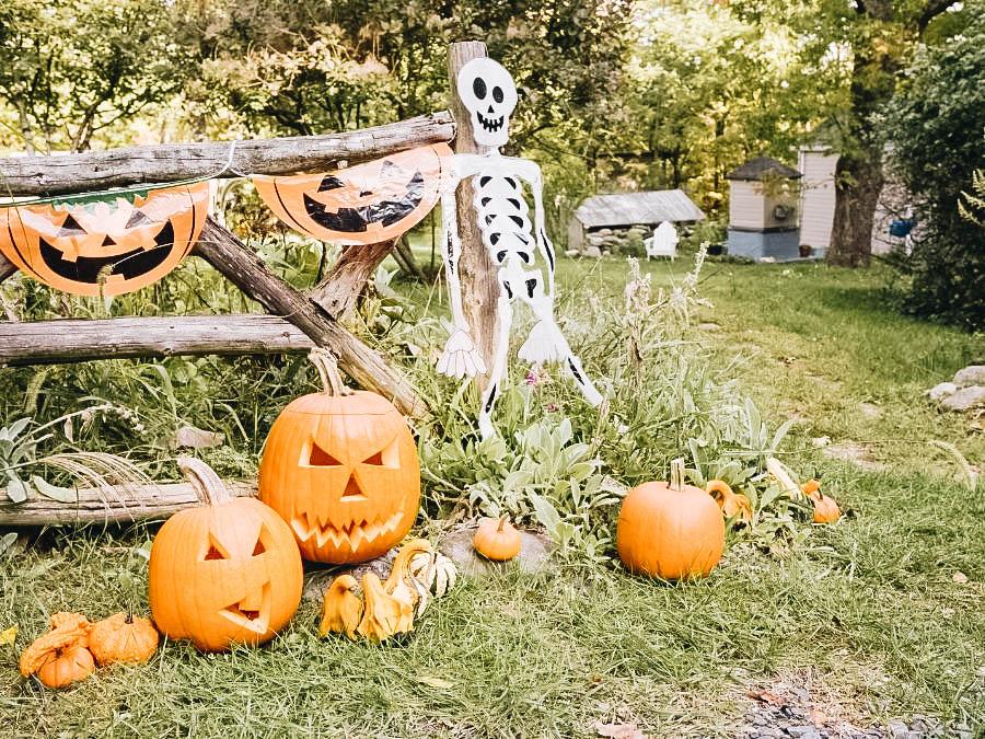 Yard Halloween decorations