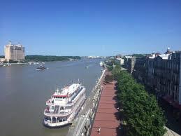 Savannah1 (1)