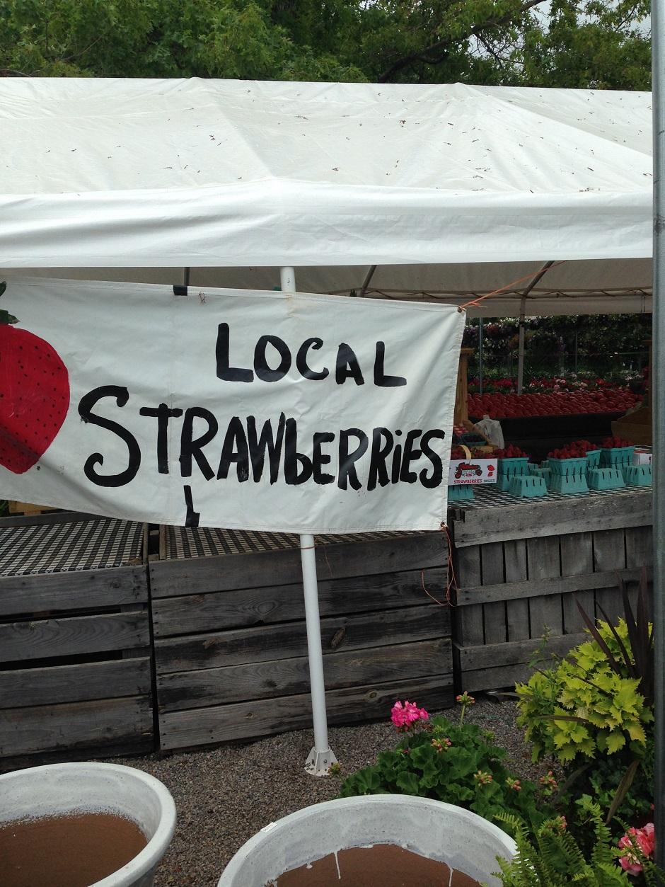 Local Farmers Market (2)