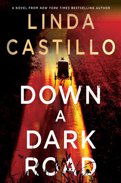 book cover - Down a Dark Road
