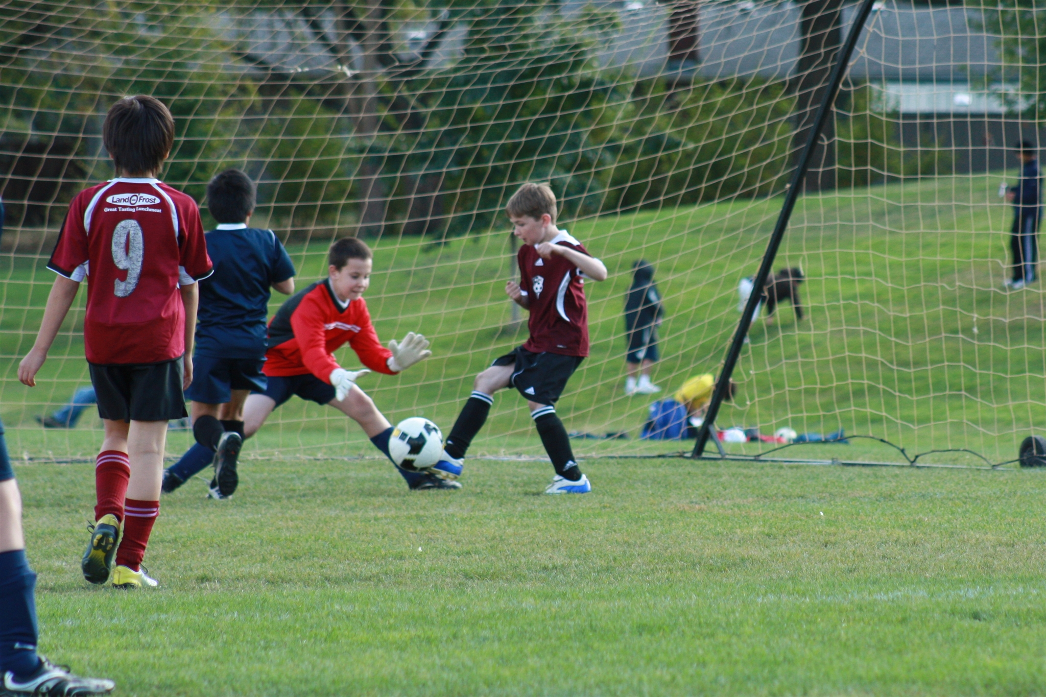 Trevor's 1st goal in the Tournament...too fast for the goalie to snap itup!