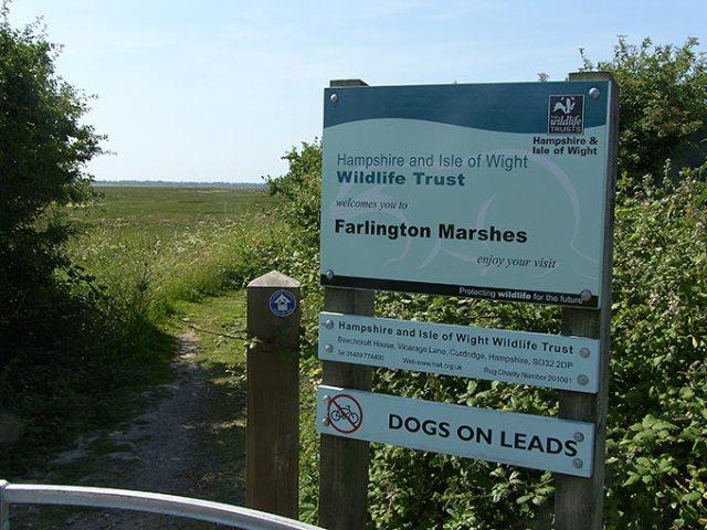 farlington-marshes-01