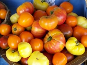Yikes! Tomatoes!