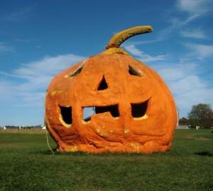 Pumpkin King at Solly's