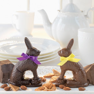 Robert L Strohecker Rabbits