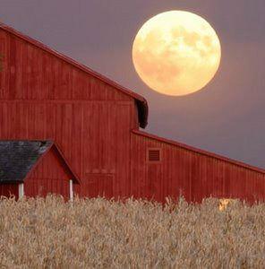 Fall Harvest Moon