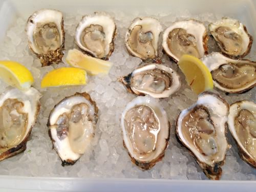 oysters from Madara's Seafood_June 11 2015