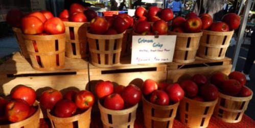 Crimson Crisp Apples, Doylestown Farmer's Market