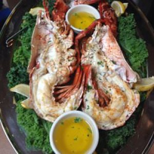 Lobster, Bucks Hotel