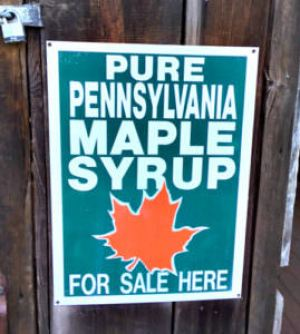 Pure Pennsylvania Maple Syrup_Winfield Farm