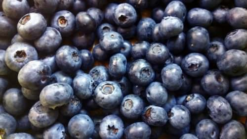 blueberries, Unsplash photo credit