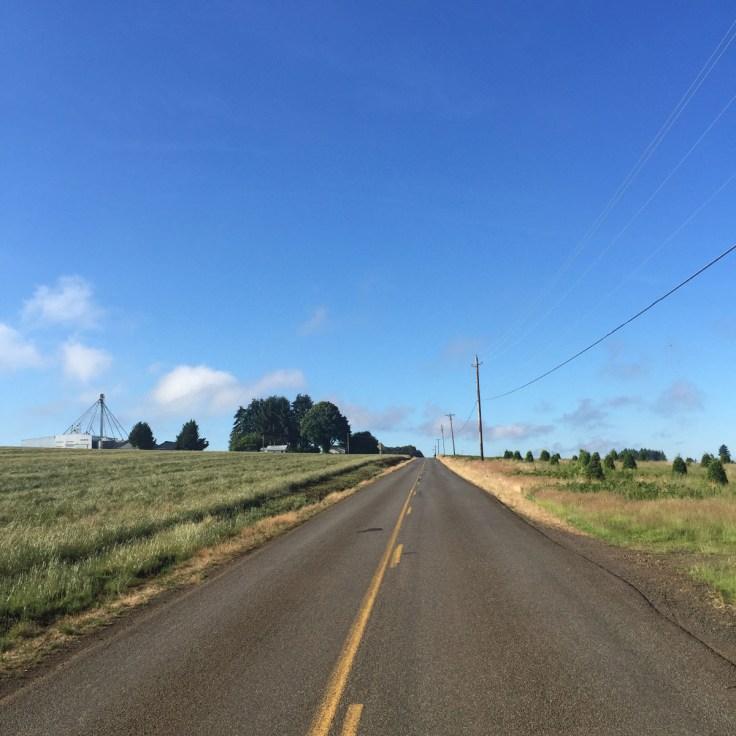 Petal Pedal 2016 Silverton Oregon