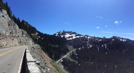 Cayuse Chinook Mount Rainier Washington