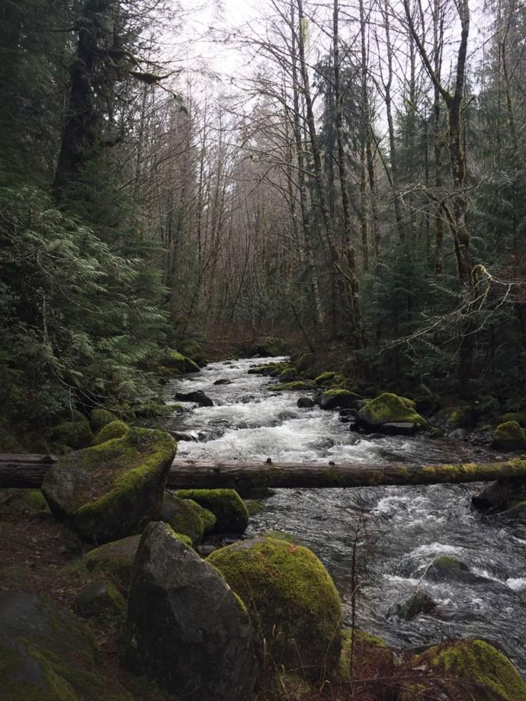 winter_creek_09