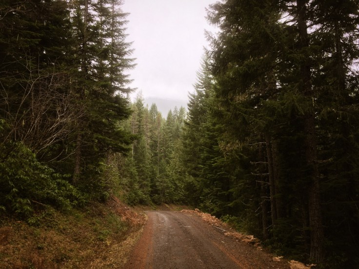 winter_creek_19-6