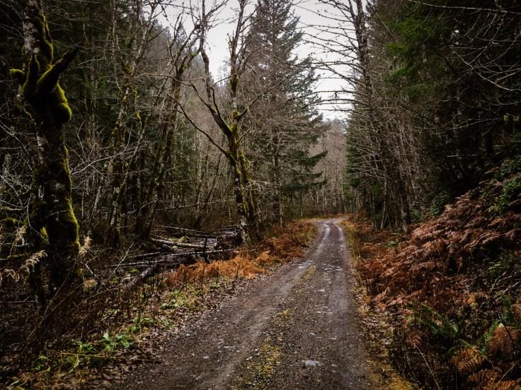 winter_creek_19-7