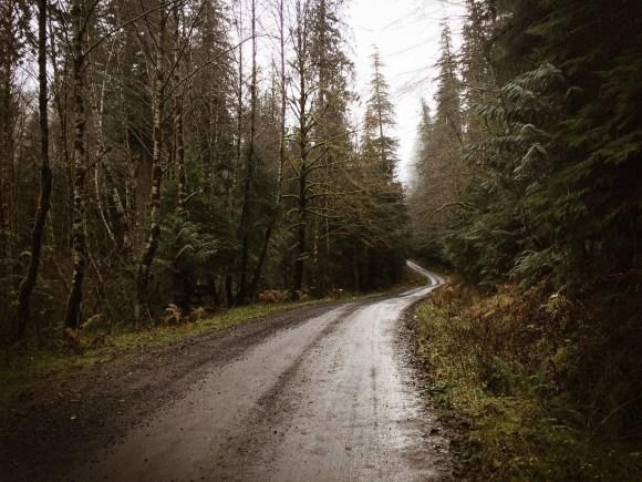 winter_creek_19_b-1.jpg
