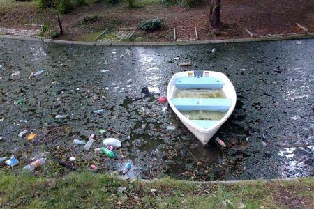 Jeg si gunoaie la tot pasul! Mizerie foarte mare in parcurile din Bucuresti!