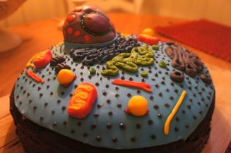 Cell Cake 1